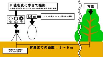 10_0_Test2_Expression.jpg