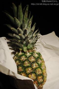 160425-14-pineapple_nostalgic.jpg