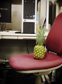 PineappleOnTheChair.jpg