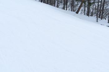 150327-02-snow-wborg.jpg
