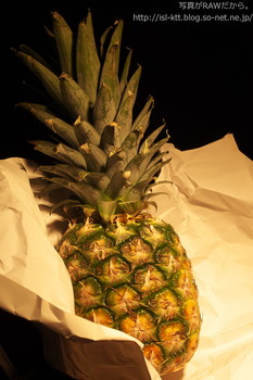 160425-11-pineapple_init.jpg