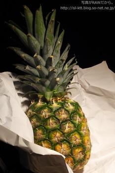 160425-12-pineapple_auto.jpg
