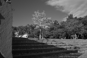 161129-07-park-orange-m.jpg
