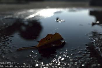161215-02-rain.jpg