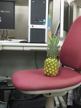 PineappleDefault.jpg