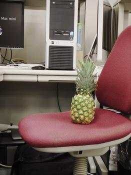 PineappleNTC.jpg